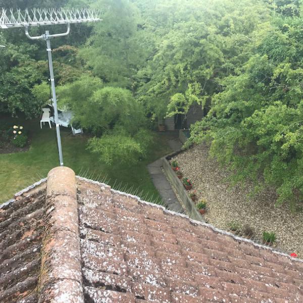 spikes on tv aerial